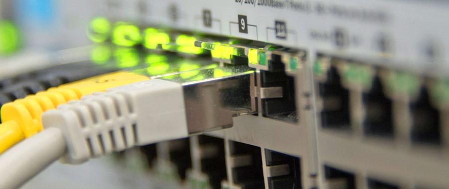 Netzwerkkabel im Switch
